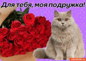 Картинка для тебя, моя подружка!