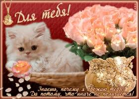 Открытка для тебя моя подружка, букет красивых роз