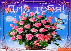 Открытка для тебя розовая корзина роз