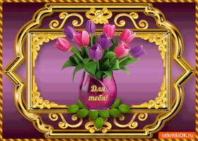 Картинка для тебя, тюльпаны нежные от меня