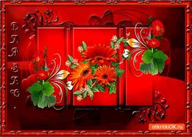 Открытка для вас великолепные цветы