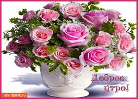 Открытка доброе утро! дарю букет роз