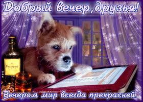 Открытка добрый вечер друзья, вечером мир всегда прекрасней