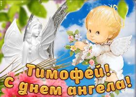 Открытка дорогой тимофей, с днём ангела