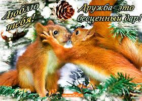Картинка дружба это бесценный дар