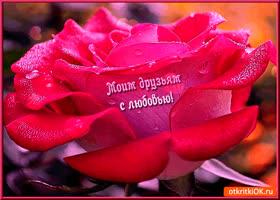 Открытка друзьям с любовью роза
