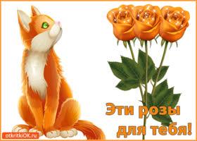 Открытка эти розы для тебя!
