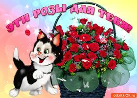 Картинка эти розы для тебя, целую тебя