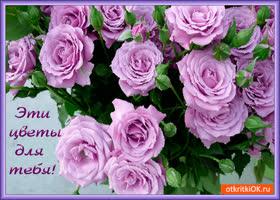 Открытка эти цветы прекрасные для тебя