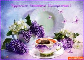 Открытка фиолетового весеннего настроения