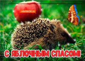 Картинка фото открытка яблочный спас