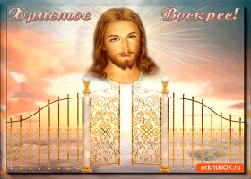 Открытка христос воскрес! друзья мои