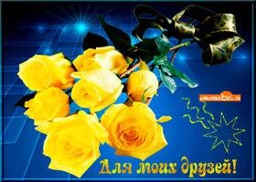Картинка желтые цветы моим друзьям