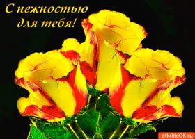Открытка желтые цветы с нежностью