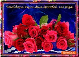 Картинка жизнь как роза