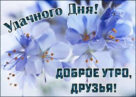 Открытка картинка доброе утро с голубыми цветами