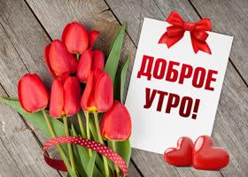 Картинка картинка доброе утро с красными тюльпанами