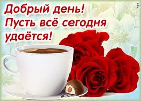 Картинка картинка добрый день с розами