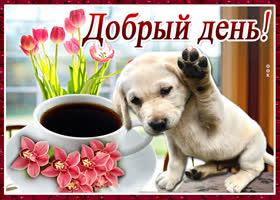 Картинка картинка добрый день с щеночком