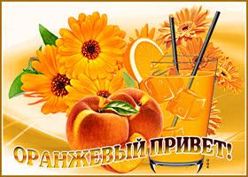 Открытка картинка оранжевый привет