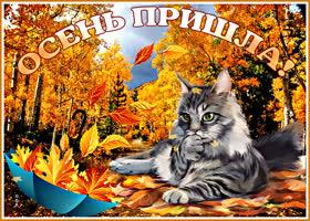 Открытка картинка осень пришла