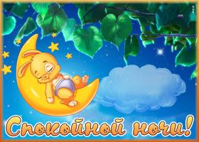 Картинка картинка спокойной ночи с зайкой