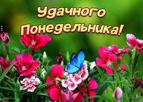 Открытка картинка удачного понедельника с цветами