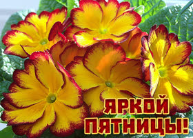 Открытка картинка яркой пятницы с цветами