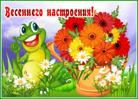 Картинка хорошая открытка для настроения