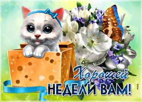 Открытка хорошего настроения и хорошей недели желаю вам друзья