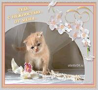 Картинка красивая открытка для тебя с нежностью