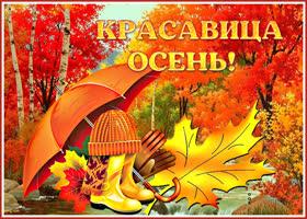 Открытка красивая картинка красавица осень