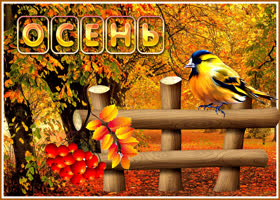Картинка красивая картинка про начало осени