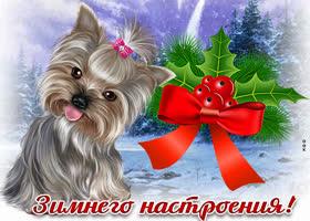 Картинка красивая картинка зимнего настроения