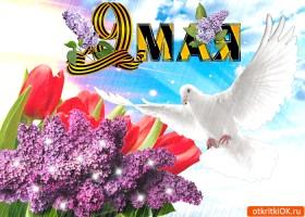 Открытка красивая открытка 9 мая