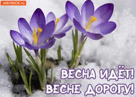 Картинка красивая открытка с первым днём весны