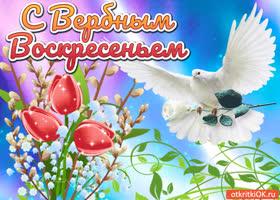 Картинка красивая открытка с вербным воскресеньем