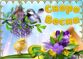 Открытка красивая открытка, весна уже скоро будет