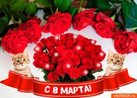 Картинка красивое и прикольное поздравление на 8 марта
