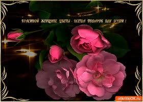Картинка красивой женщине цветы всегда подарок для души