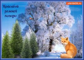Открытка красивой зимней погоды