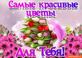 Открытка красивый букет тюльпанов