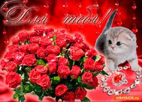 Картинка красные цветы для тебя