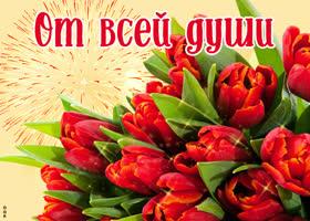 Открытка красные тюльпаны от всей души