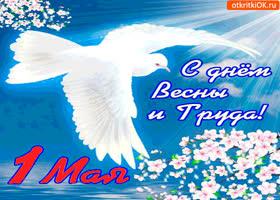 Открытка май нашу землю украшает - с 1 мая
