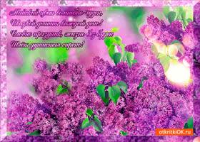 Картинка майский цвет чудесный