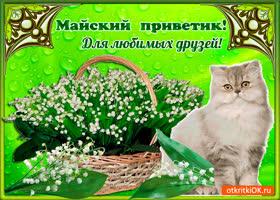 Открытка майский приветик для любимых друзей
