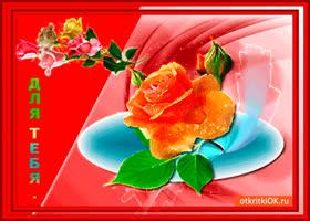 Открытка милые цветы в открытке тебе