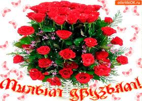 Картинка милым друзьям корзина с розами