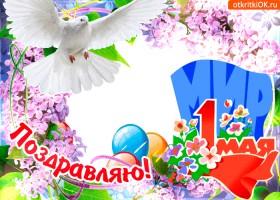 Открытка мир всем в день 1 мая